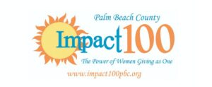 Impact 100 Charity